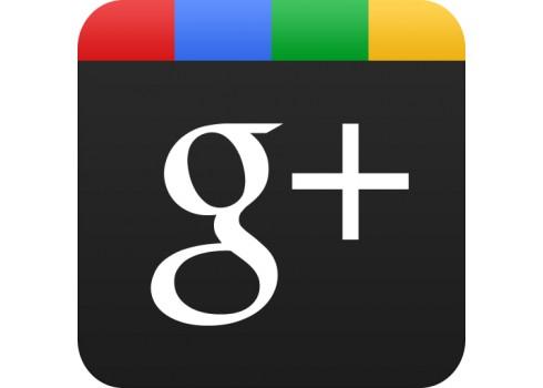Google +1 推出了